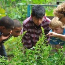 Common Ground Summer Camps