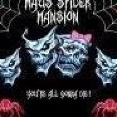 Spider Mansion Haunted House