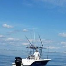 Wee Cat Fishing Charters & Sportsman Camps