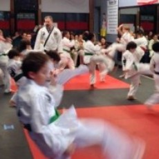 Full Circle DoJang Martial Arts School