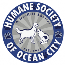 Humane Society of Ocean City