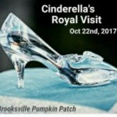 Things to do in Spring Hill, FL for Kids: Cinderella's Royal Visit, Brooksville Pumpkin Patch