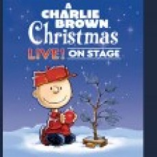Things to do in Folsom-EDH, CA: A Charlie Brown Christmas Live on Stage