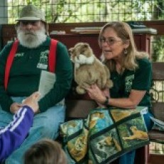 Things to do in Folsom-EDH, CA for Kids: Wild Wednesday, Folsom Public Library
