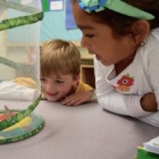 Things to do in Brookline-Norwood, MA for Kids: Open House at The Sage School, The Sage School