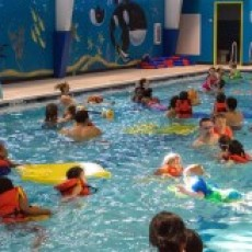 Things to do in Waukesha-Lake Country, WI: Family Swim