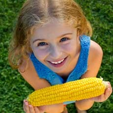Things to do in Belmont-Newton, MA for Kids: Corn Roast on the Farm, Gore Place