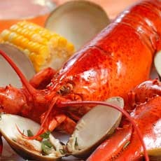Things to do in Southern Monmouth, NJ: Annual New Jersey Seafood Festival in Belmar