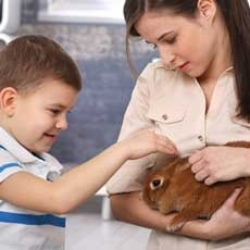 Kids 'N Critters Day Camp (Ages: 7-14)
