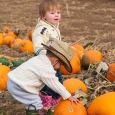 Things to do in Gilbert, AZ for Kids: Corn Maze & Pumpkin Days, Tolmachoff Farms