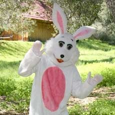 Things to do in Charleston, SC for Kids: Carhop Easter Bunny, Skip & Sully
