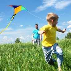 Things to do in Orland Park-Frankfort, IL: 14th Annual Family Fun Fly (Kites)