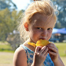 Things to do in Martin County-Port St Lucie, FL for Kids: Daddy-O's 10th Annual Tropical Fruit Fest, Pinder's Nursery