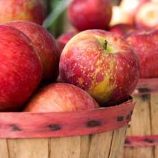 HVO Apple Festival | September 15 & 16, 22 & 23