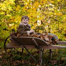 Northern Kentucky, KY Events for Kids: Fall Festival