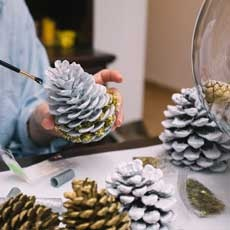Take & Make: Pine Cone Bird Feeder Kit