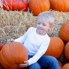 Cougar Mountain Pumpkin Patch & Christmas Trees