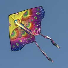 Carrboro's Annual Kite Fly at Hank Anderson Park