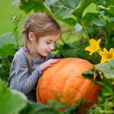 Things to do in Rock Hill, SC for Kids: Fall Farm Fun, Bush-N-Vine Farm