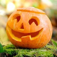Things to do in Charleston, SC: Family Fun Events: Pumpkin Painting Workshop