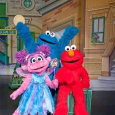 Things to do in Brookline-Norwood, MA: Sesame Street Live: