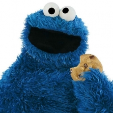 Things to do in Mansfield-Attleboro, MA: Storytime at Showcase Cinema de lux with Cookie Monster