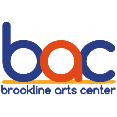 Brookline-Norwood, MA Events for Kids: Snowflake Festival