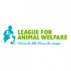 Compassionate No-Kill Animal Shelter