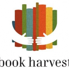 Volunteer Book Sorting at Book Harvest