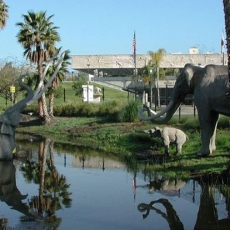 Things to do in Venice-El Segundo, CA: Wells Fargo Free First Tuesdays @ La Brea Tar Pits
