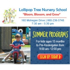 Lollipop Tree Nursery School Camp