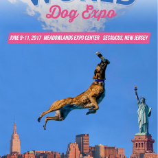 World Dog Expo-Kids 12 and Under FREE
