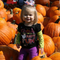 Shaw Farm Fall Festival Weekends