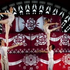 Edison-Piscataway, NJ Events for Kids: National Acrobats of the People's Republic of China