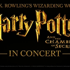 Bergen County South, NJ Events for Kids: Harry Potter and Chamber of Secrets