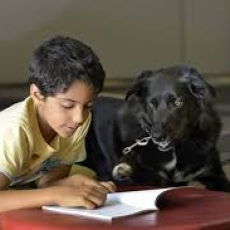 Paws Love on a Leash Reading Program