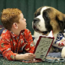 PAWS 2 Read @ Sunrise Mountain Library