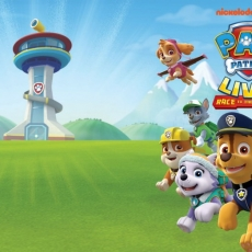 Things to do in San Antonio Northwest, TX: Paw Patrol Live