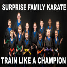 Traditional Karate Class (Ages 6 & Up)