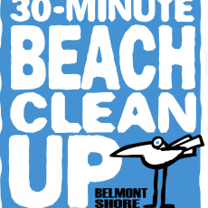 30-Minute Beach Cleanup