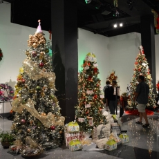 11th Annual Festival of the Trees