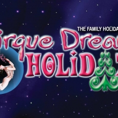 Cirque Dreams Holidaze - 2 Nights (3 Show Times Available)