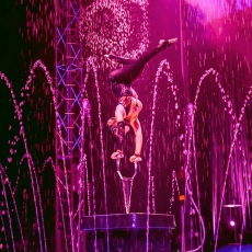 Things to do in Martin County-Port St Lucie, FL for Kids: Cirque Italia (Water Circus) / Jan 10-13, St Lucie Mets / First Data Field (formerlyTradition Field)