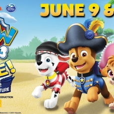 Things to do in Greenville, SC: Paw Patrol Live- The Pirate Adventure