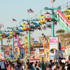 Things to do in Wesley Chapel-Lutz, FL: Florida State Fair