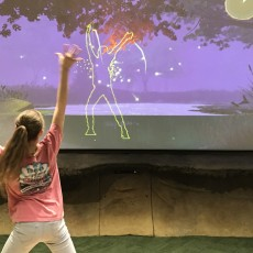 Things to do in Arlington, TX for Kids: River Legacy Discovery Room, River Legacy Living Science Center