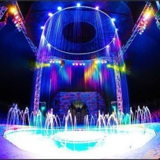Things to do in Arlington, TX for Kids: Cirque Italia, North East Mall