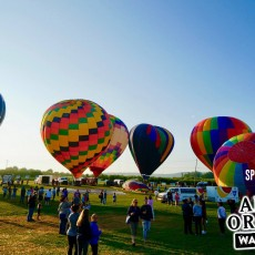 Things to do in Westchester North, NY for Kids: Empire State Hot-Air Balloon Festival, Barton Orchards