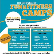 Fun & Fitness Camps