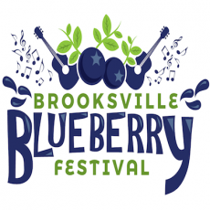 Spring Hill, FL Events for Kids: Brooksville Blueberry Festival